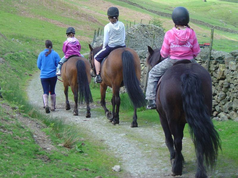 agriturismo-con-cavalli-3
